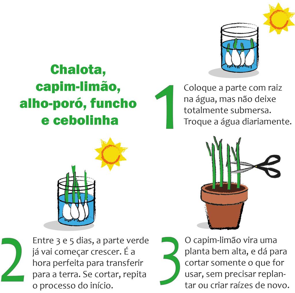 01-horta-em-casa-7-tipos-de-plantas-que-voce-pode-cultivar-tranquilamente