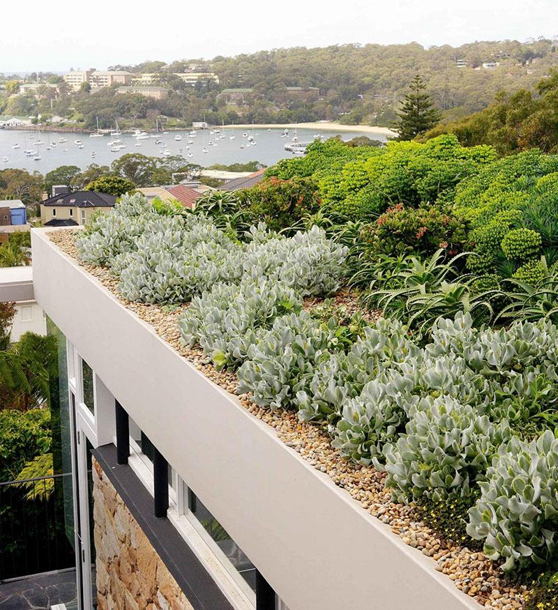 02-dicas-para-ter-um-jardim-no-telhado