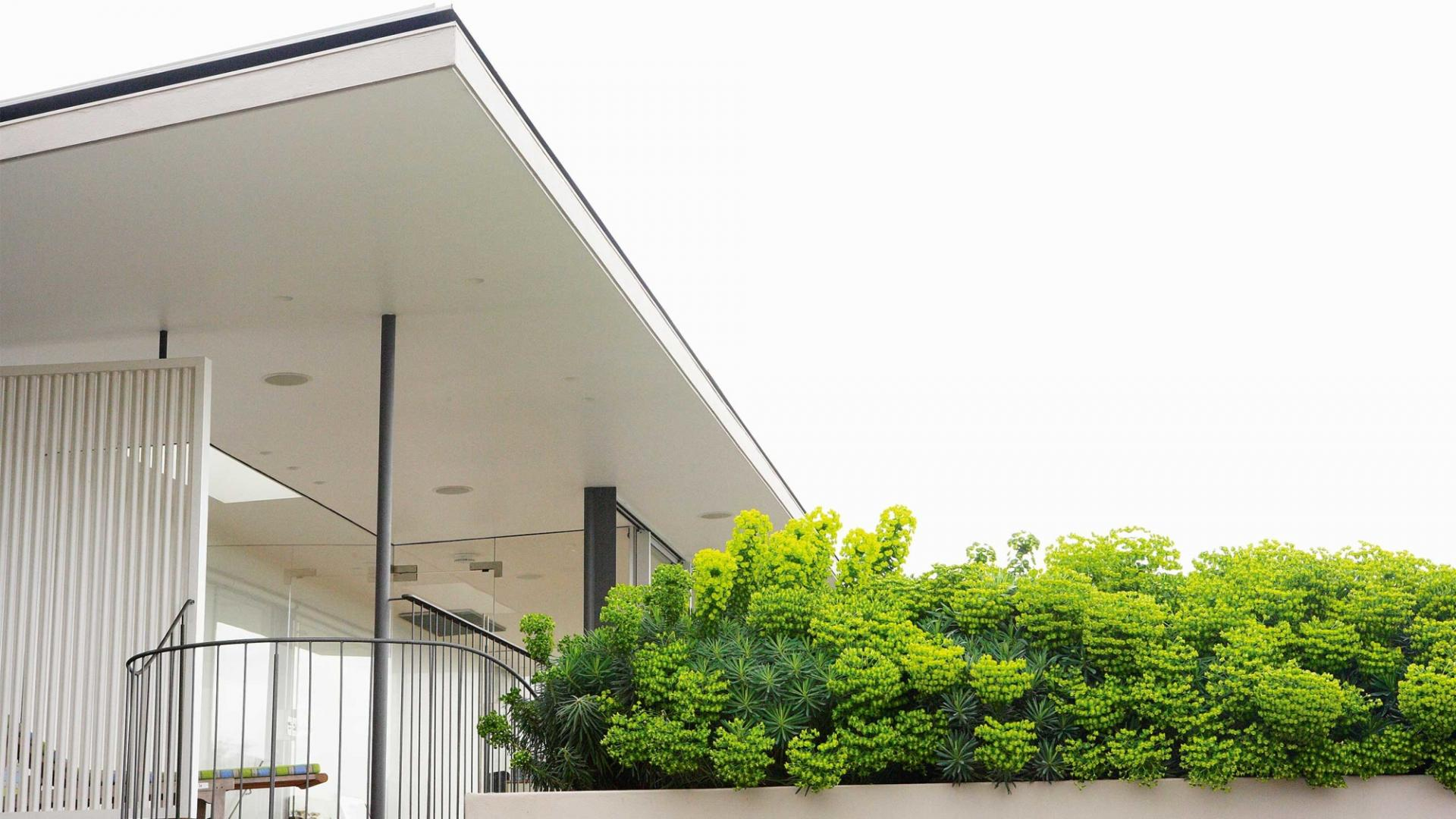 03-dicas-para-ter-um-jardim-no-telhado