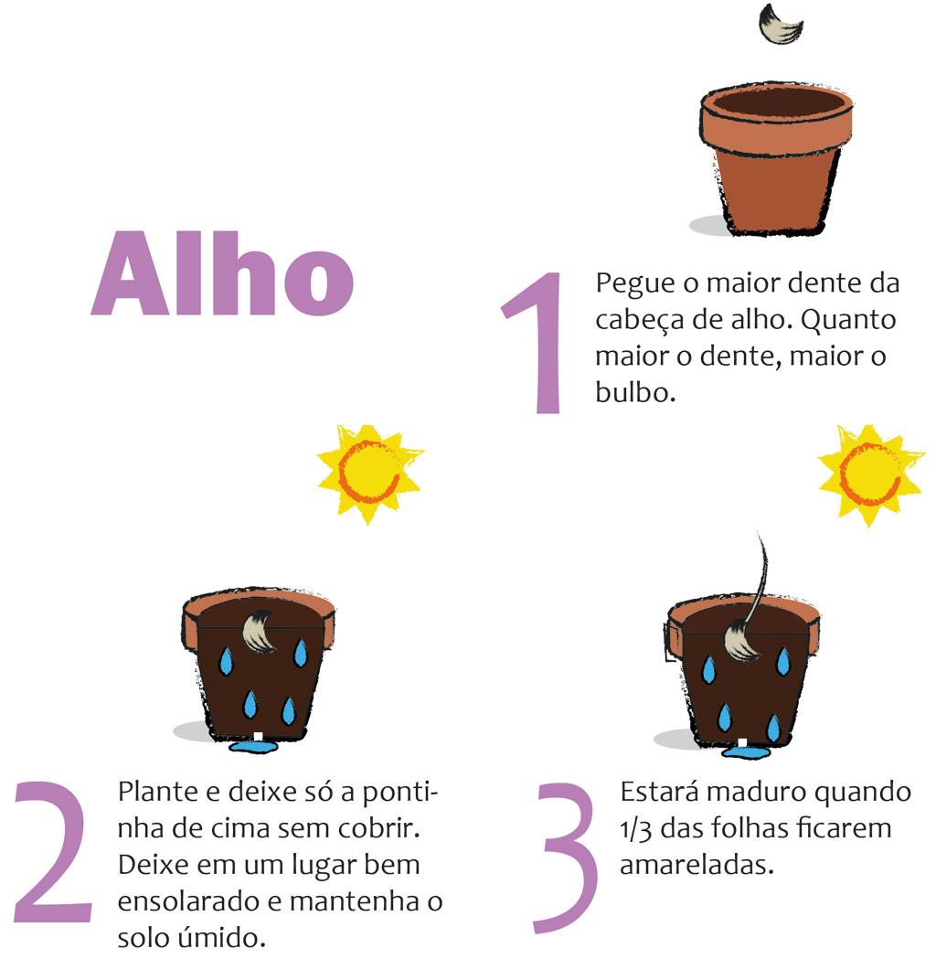 05-horta-em-casa-7-tipos-de-plantas-que-voce-pode-cultivar-tranquilamente