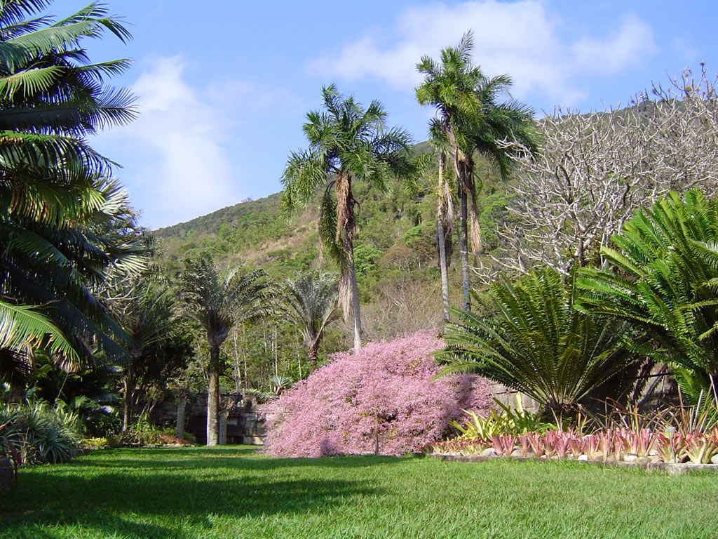 05-jardins-de-burle-marx-para-visitar-no-brasil