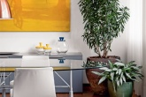 06-plantas-dentro-de-casa-quais-usar-