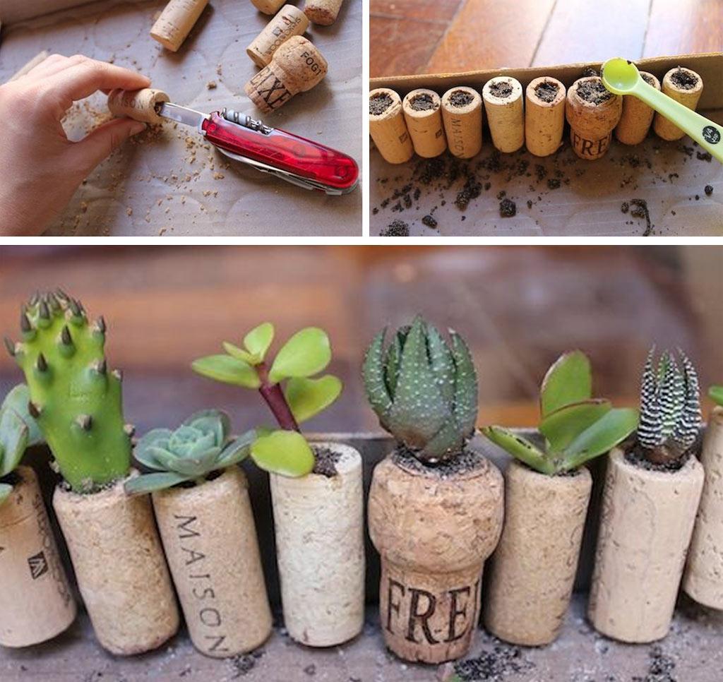 08-ideias-de-lugares-inusitados-para-cultivar-suculentas