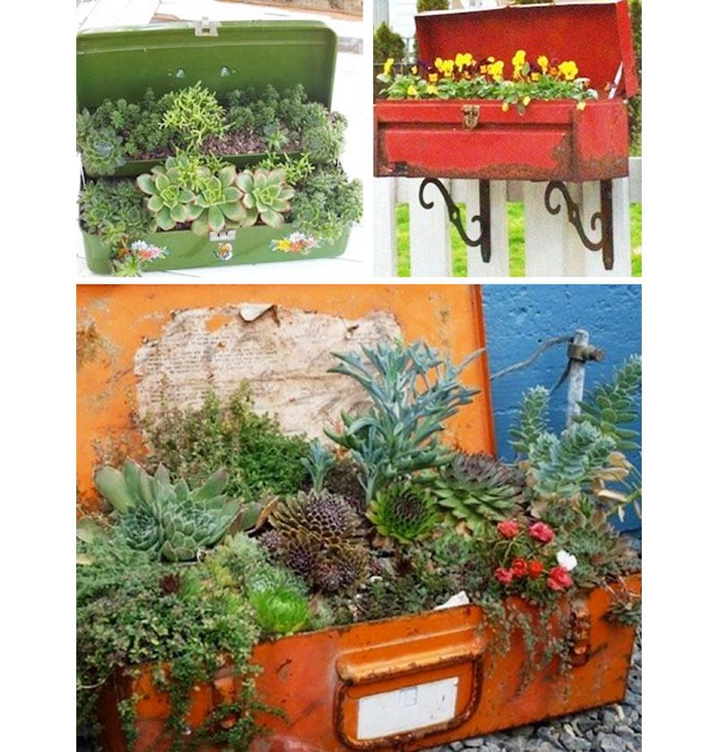 09-ideias-de-lugares-inusitados-para-cultivar-suculentas