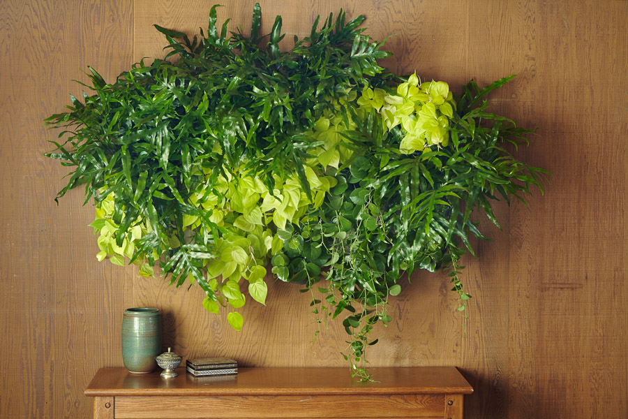 1-faca-voce-mesmo-jardim-vertical-para-decorar-a-casa