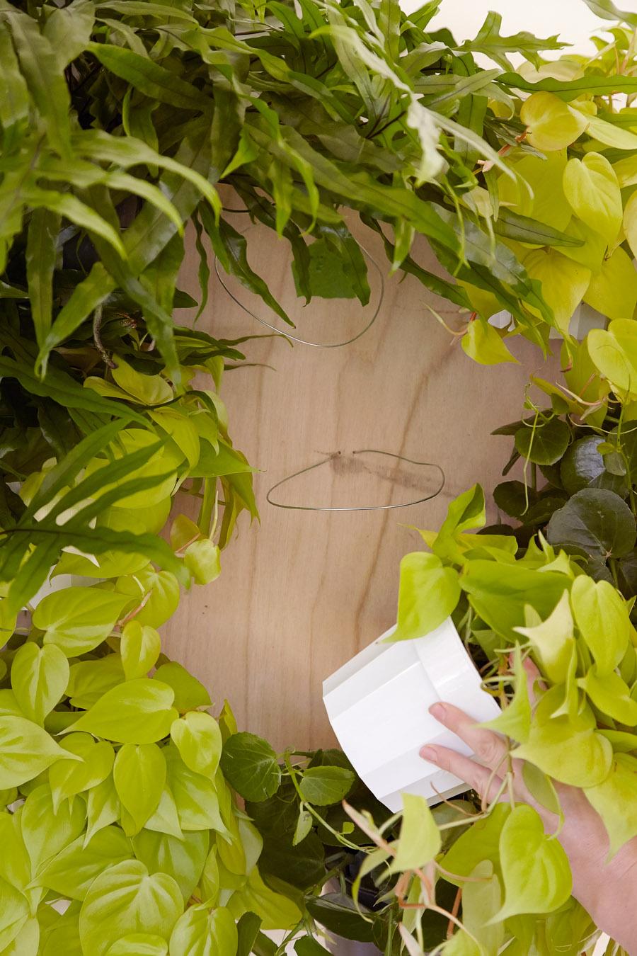 10-faca-voce-mesmo-jardim-vertical-para-decorar-a-casa