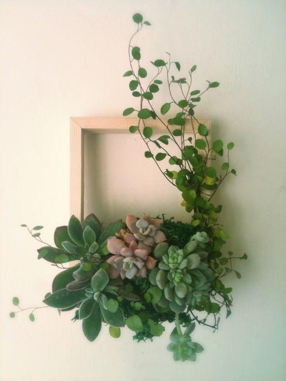 11-ideias-para-fazer-quadros-suculentas-em-casa