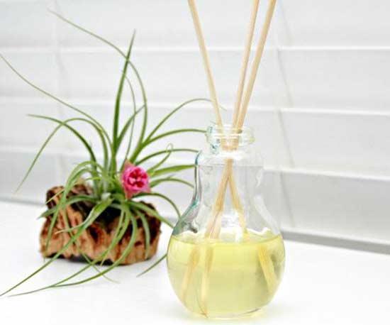 11-aromatizadores-naturais-para-fazer-em-casa-extra