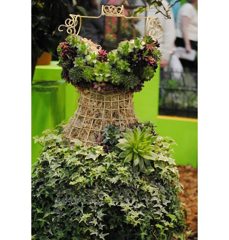 13-ideias-de-lugares-inusitados-para-cultivar-suculentas