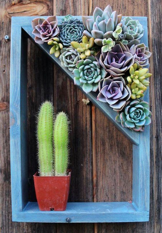 18-ideias-para-fazer-quadros-suculentas-em-casa