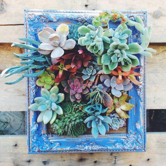 24-ideias-para-fazer-quadros-suculentas-em-casa