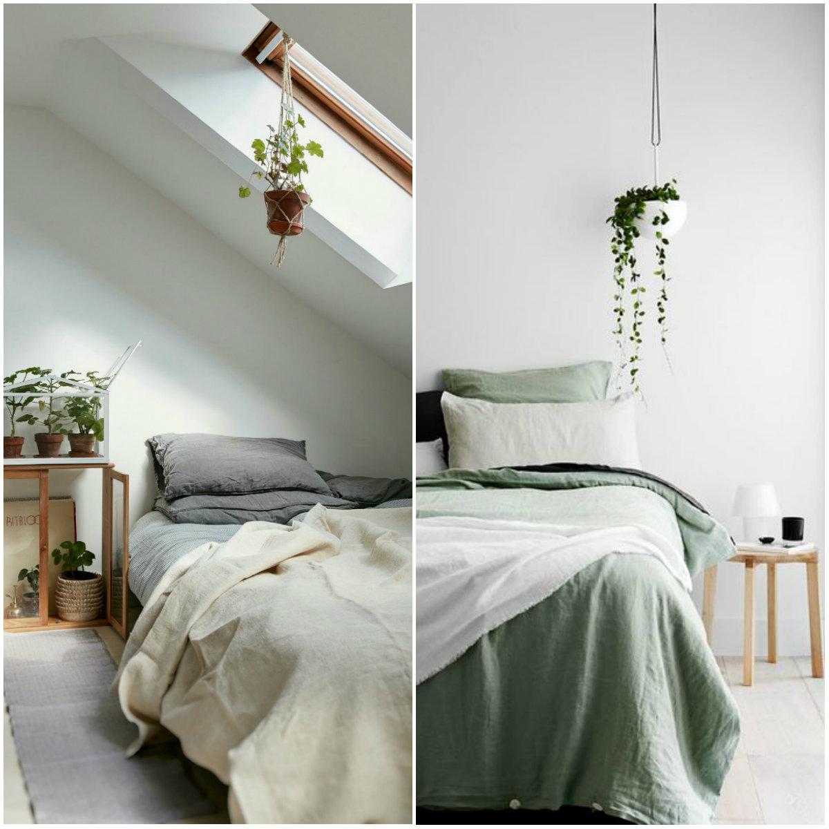 quartos-com-plantas-penduradas