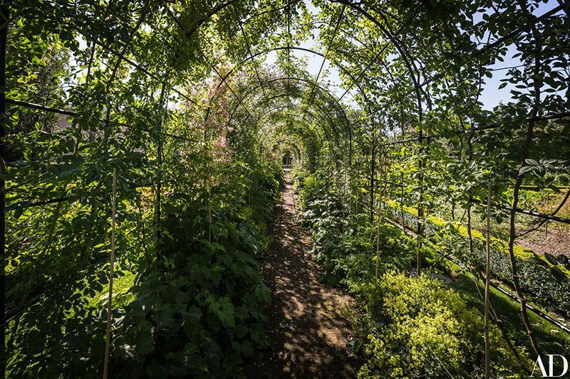 02-jardim-de-casa-bicentenaria-na-suica-ganha-curvas-modernas