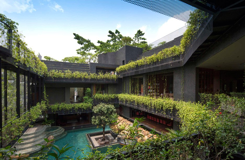 02-telhado-verde-escalonado-abraca-a-piscina-em-casa-em-cingapura