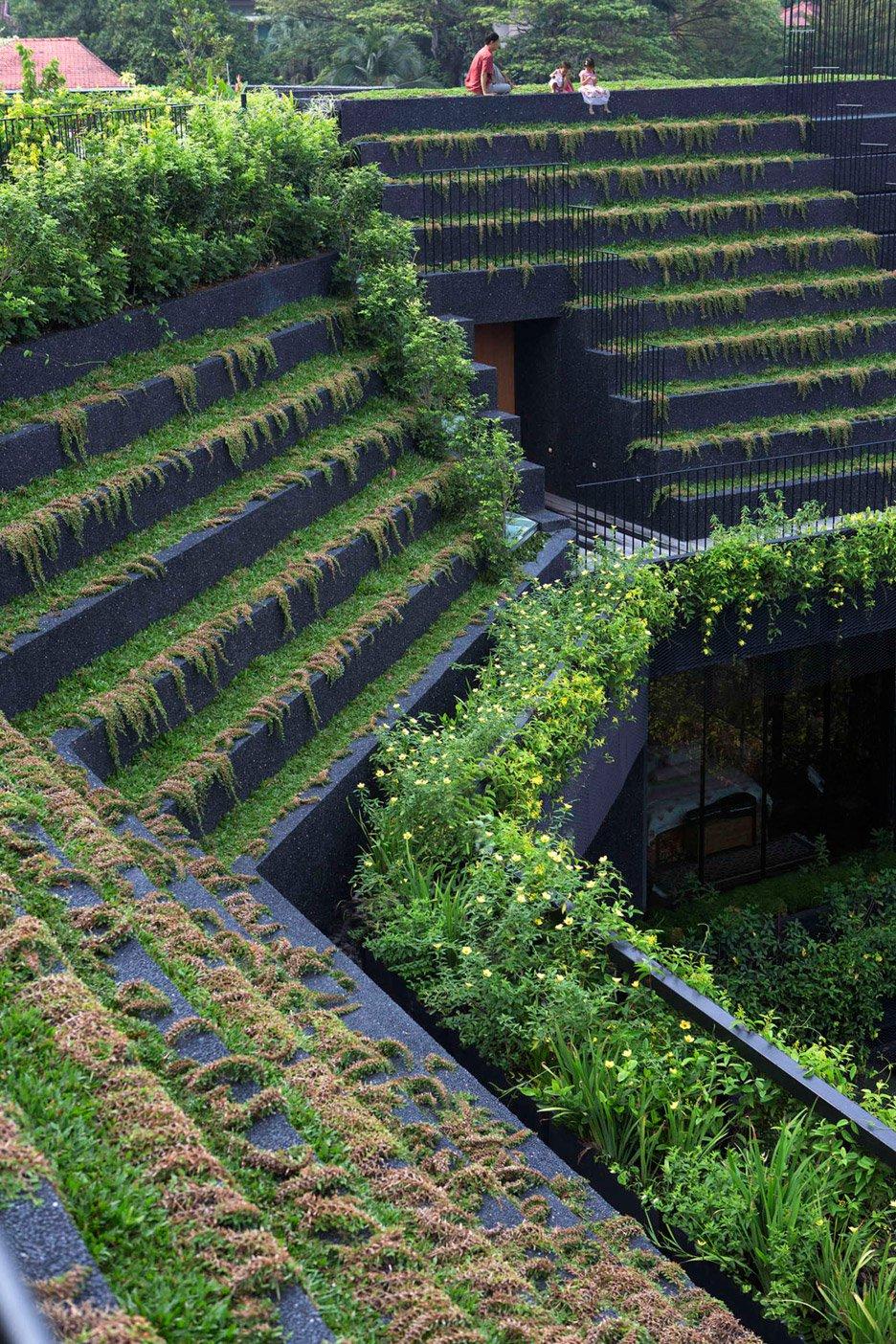 04-telhado-verde-escalonado-abraca-a-piscina-em-casa-em-cingapura