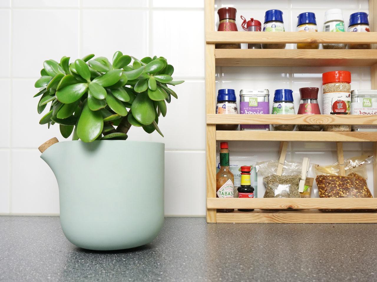 05-com-este-vaso-voce-so-precisa-regar-as-plantas-uma-vez-por-mes