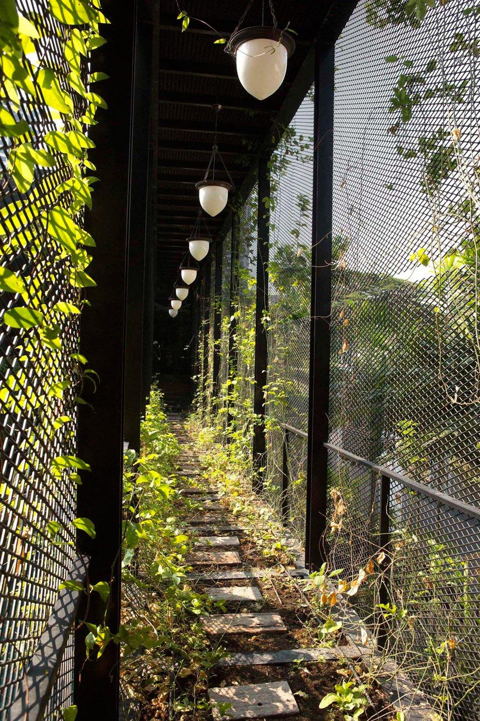 07-telhado-verde-escalonado-abraca-a-piscina-em-casa-em-cingapura
