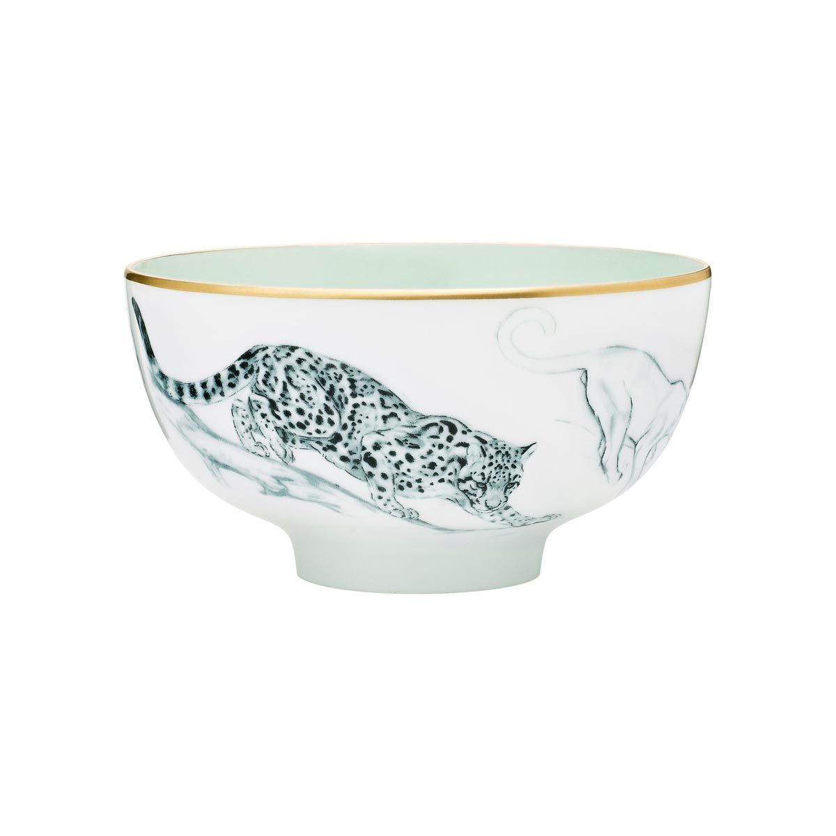16-porcelana-selva