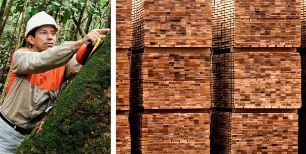 28-29-premio-planeta-casa-vencedores-2012