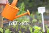 abre-horta-comunitaria-cultive-essa-ideia