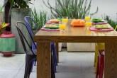 destaque-quintal-com-vasos-de-temperos-e-folhagens-coloridas