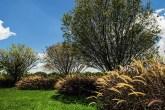 home-nova-jardim-contemporâneo-mistura-volumetria-e-espaços-vazios