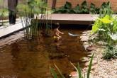 home-nova-jardim-tem-lago-ornamental-que-tambem-serve-para-nadar