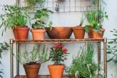 home-nova-quintal-em-porto-alegre-tem-jardim-horta-e-espaco-para-criancas