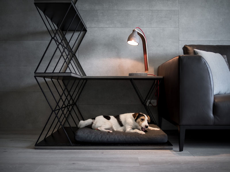 1-movel-integra-cama-para-pet-mesa-e-estante-nesta-sala
