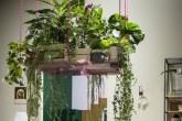 Sala com jardim suspenso