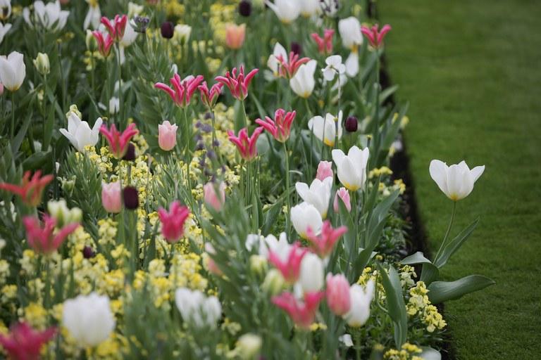 Princesa Diana ganha jardim em sua homenagem