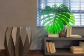 guia-como-escolher-e-cuidar-do-piso-de-madeira-ideal
