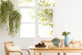 Mesa e cadeiras de madeira e hanger com plantas