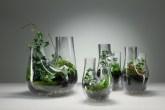 Terrários da coleção Plant, de Tom Dixon.