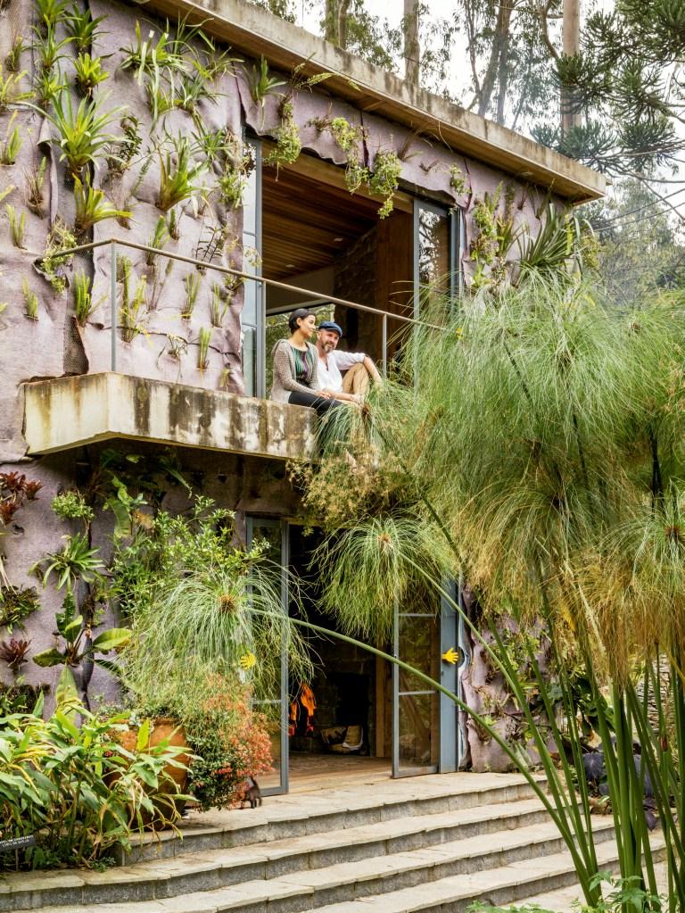 Casa em Minas Gerais tem jardim com mais de 400 espécies raras
