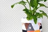 Planta com cachepot colorido