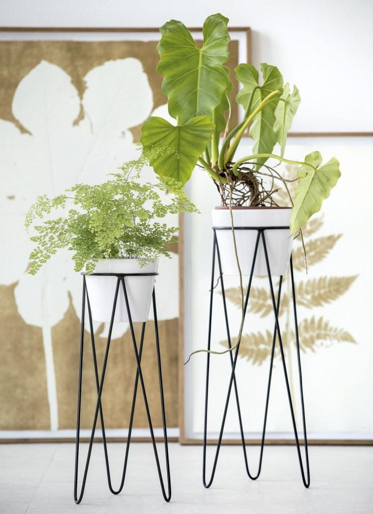 Quadros de Kika Levy (Janaína Torres Galeria), suportes e vasos da Mind D,piso de porcelanato da Portobello e plantas do Shopping Garden.