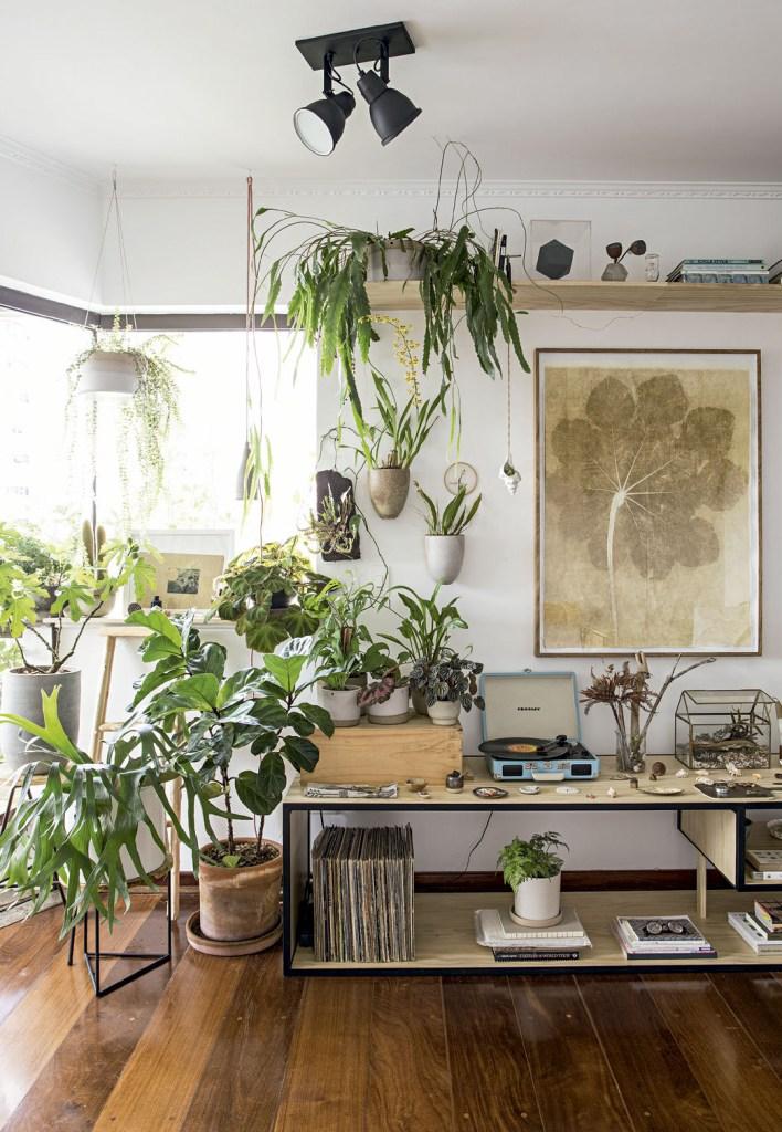 A sala exibe ripsális, fícus-lyrata, chifre-de-veado e orquídeas. Quadro de Kika Levy.