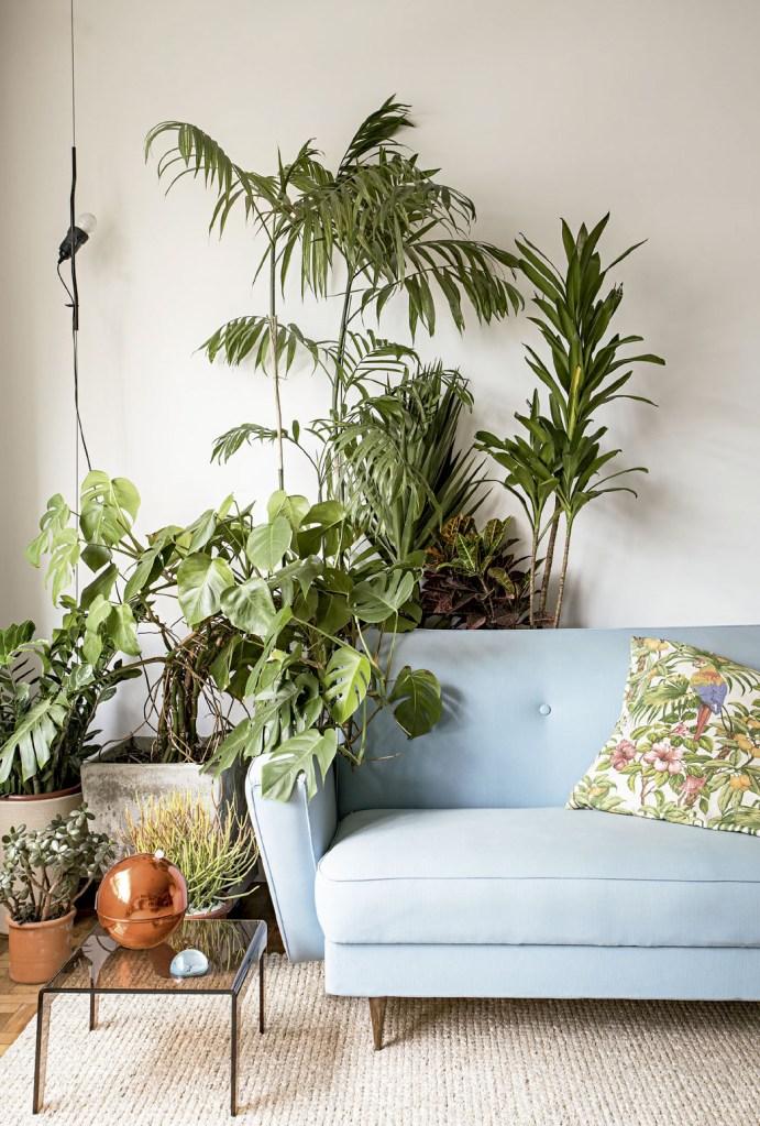 Com uma pegada vintage, a decoração do apê traz peças garimpadas, como o sofá. Uma costela-de-adão preenche a lateral do móvel.