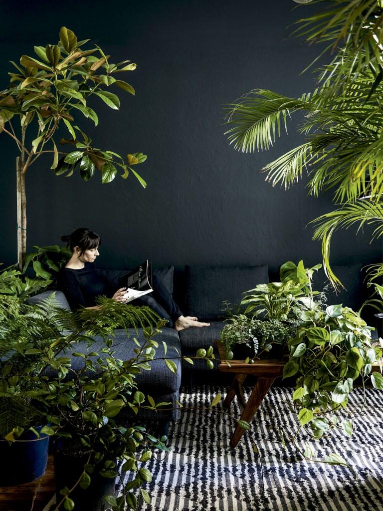 Não é preciso ter um jardim para viver cercado de plantas. Confira como montar uma paisagem indoor