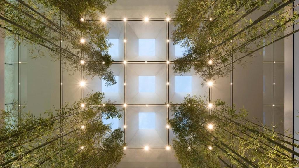 Com projeto do Foster+Partners, o novo espaço conta com uma praça externa cercada por uma floresta de bambus